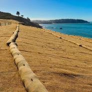 Link to Erosion Control & Drainage