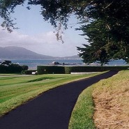 Thumbnail navigation item to preview Pebble Beach Cart Pathways image