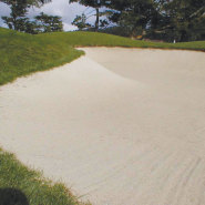 Link to Topdressing Sand