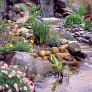 Link to Pond Materials
